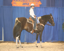2012 Katie and Flash state fair 1st place western pleasure